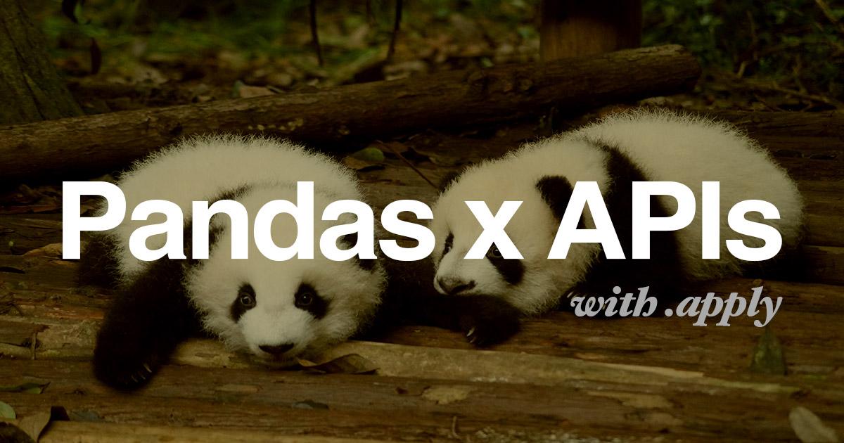 API Calls within a Pandas Dataframe API using Pandas Apply